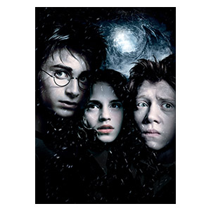 Harry Potter. Размер: 30 х 42 см